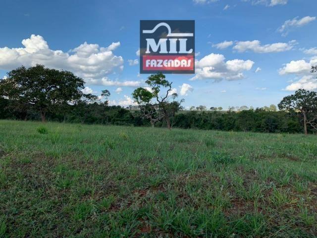 Fazenda dupla apitidão 200 Alqueires ( 968 hectares ) Itajá-GO - Foto 11