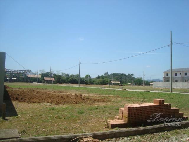 Òtimos terrenos para investimento em morretes - Foto 11