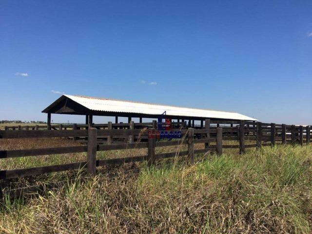 Belíssima fazenda localizada á margem da BR 364 - Foto 5