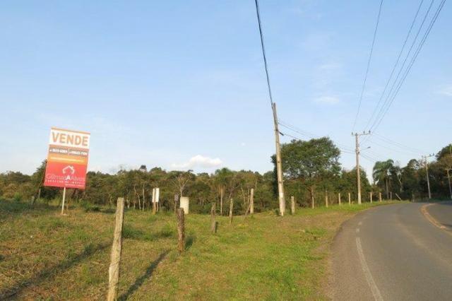 Terreno para Venda, São Bento do Sul / SC, bairro Rio Vermelho Estação - Foto 3