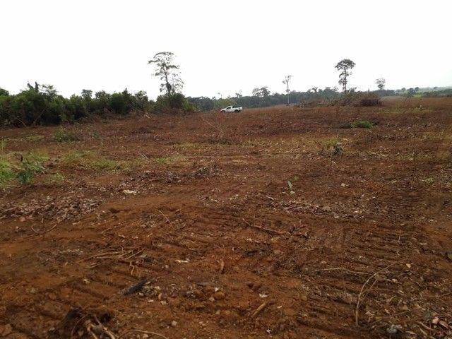 Fazenda em RO Próximo à Porto Velho  - Foto 2