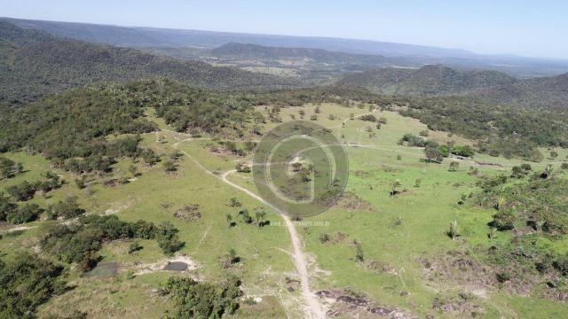 Fazenda 380 ha, na região de são vicente - Foto 5