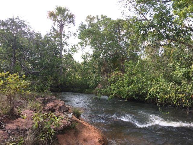 20 Alqueires, cheia de cachoeiras, perfeita para Ecoturismo. - Foto 9