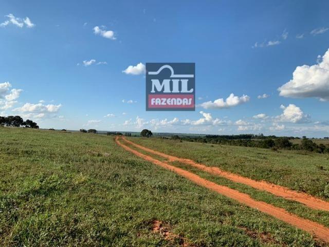 Fazenda dupla apitidão 200 Alqueires ( 968 hectares ) Itajá-GO - Foto 5