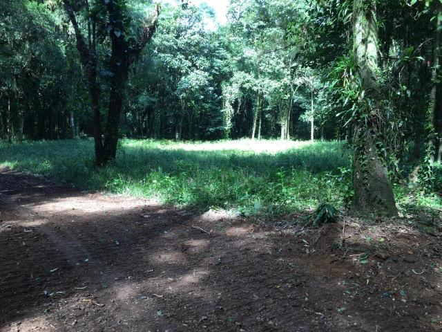 Terreno para chácara Quiriri - Foto 5