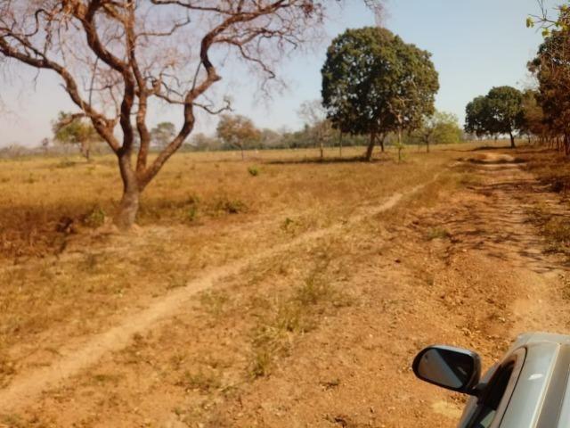 Fazenda em Livramento com piscina, muito pasto, represas e lago - Foto 11