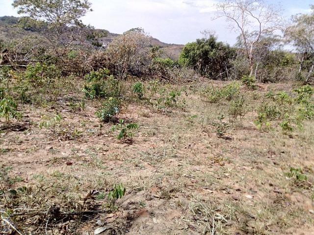 Venda de Fazenda, 650 hectares, Guiratinga - MT - Foto 5