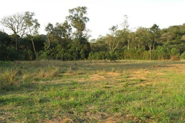 Terreno para Venda, São Bento do Sul / SC, bairro Rio Vermelho Estação - Foto 14