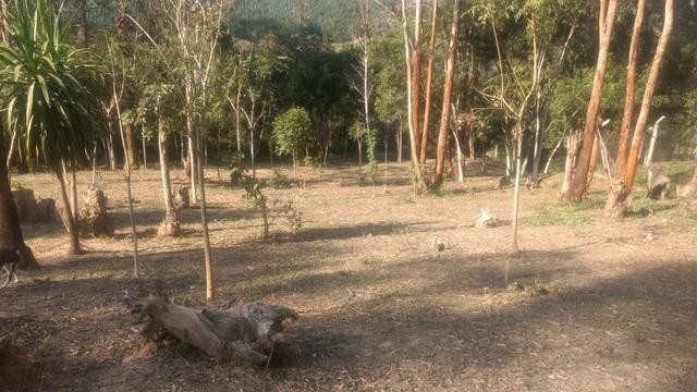 Troco ou vendo Chácara 13.000m2 - Foto 10