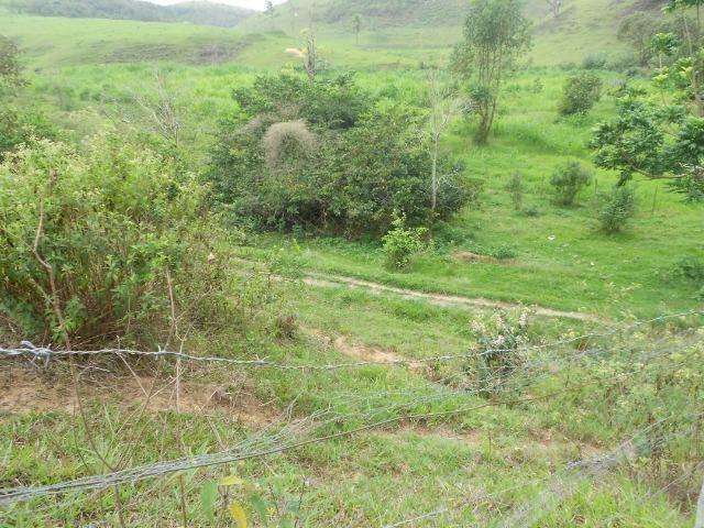 Jordão Corretores - Fazendinha leiteira 5 alqueires - Foto 20