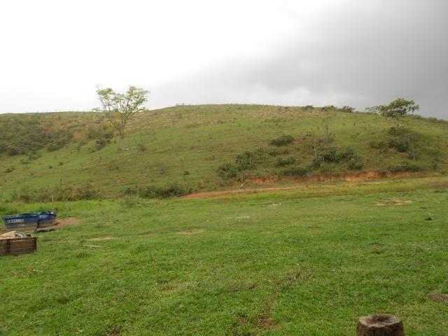 Jordão Corretores - Fazendinha leiteira 5 alqueires - Foto 17