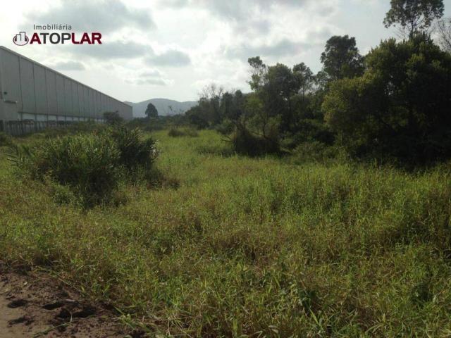 Terreno à venda, 300 m² por R$ 130.000,00 - São Domingos - Navegantes/SC