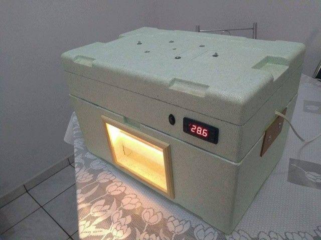 Chocadeira De Isopor 100% Automática Para 90 Ovos De Codorna