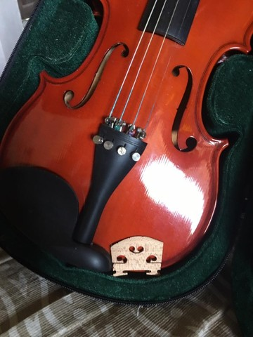 Violino ,Michael 4/4 - Foto 2