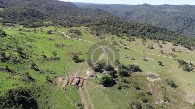 Fazenda 380 ha, na região de são vicente - Foto 3