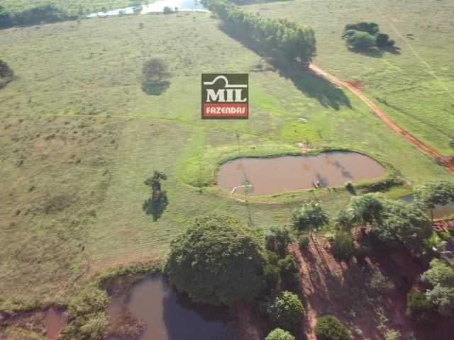 Fazenda dupla apitidão 200 Alqueires ( 968 hectares ) Itajá-GO - Foto 14