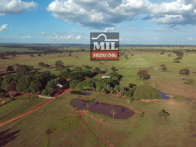 Fazenda dupla apitidão 200 Alqueires ( 968 hectares ) Itajá-GO - Foto 12