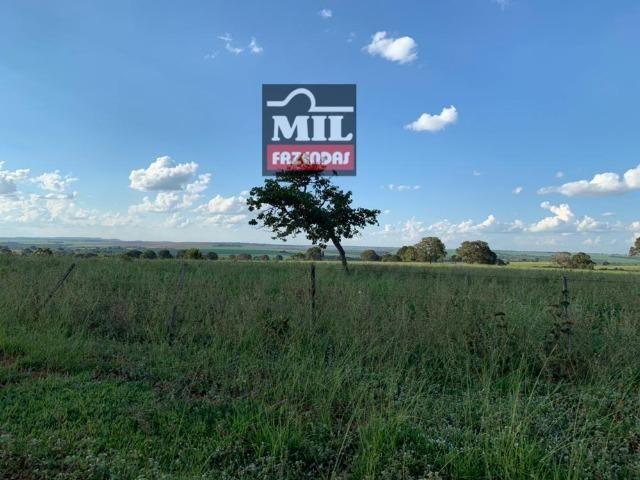 Fazenda dupla apitidão 200 Alqueires ( 968 hectares ) Itajá-GO - Foto 7