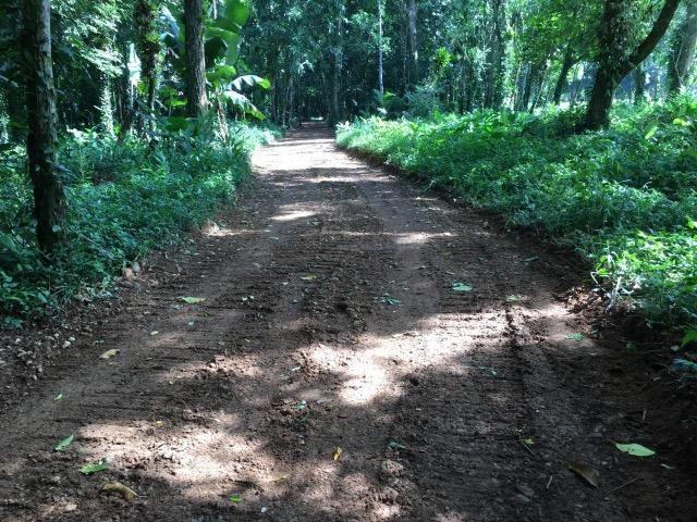 Terreno para chácara Quiriri - Foto 2