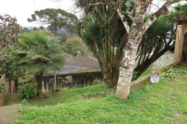 Terreno para Venda, 553,86 m², São Bento do Sul / SC, bairro Serra Alta - Foto 3