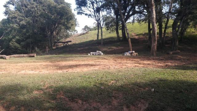 Fazenda 85 alqueres - Foto 7