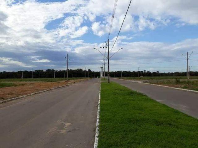 Terreno para Venda floresta tropical - Foto 2