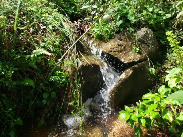 Belíssimo imóvel com rio e com muita privacidade! - Foto 19