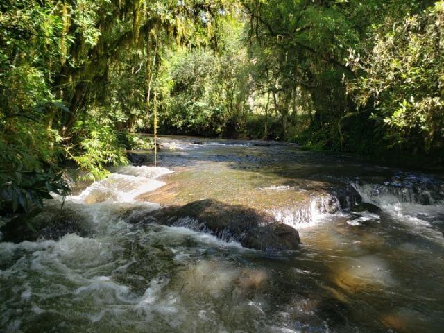 Belíssimo imóvel com rio e com muita privacidade! - Foto 2