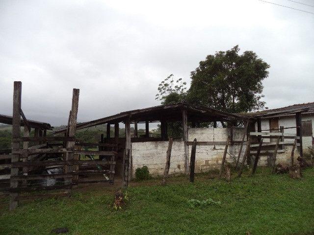 Otimo sítio para criação de gado e moradia - Foto 4