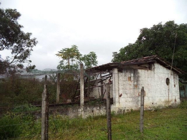 Otimo sítio para criação de gado e moradia - Foto 19