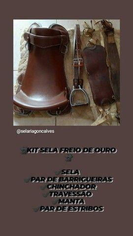 KIT SELA FREIO DE OURO  - Foto 2