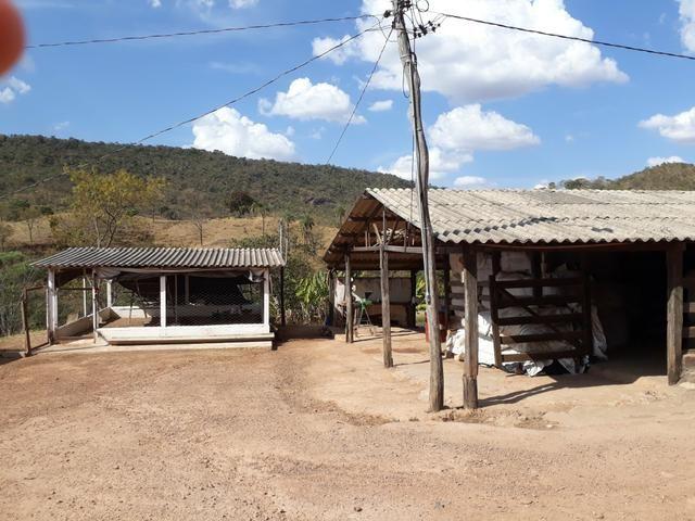 Oportunidade!! Vendo excelente fazenda em Formosa Goiás, com 168 hectares com muita água - Foto 2