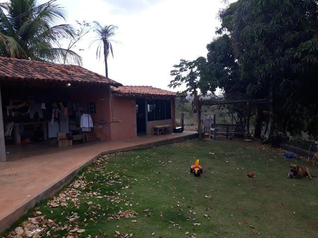 Oportunidade!! Vendo excelente fazenda em Formosa Goiás, com 168 hectares com muita água - Foto 6