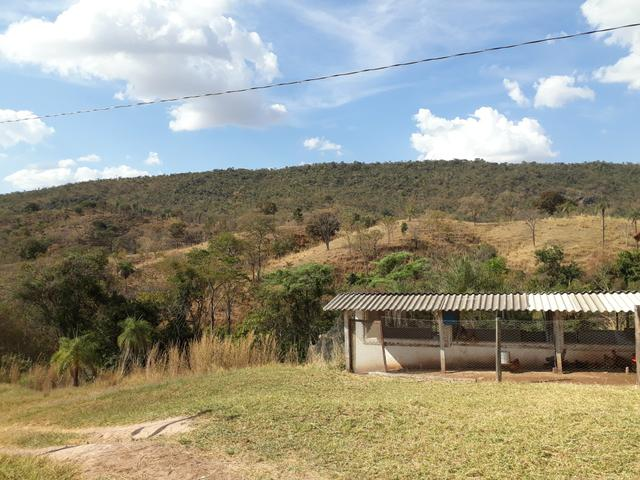 Oportunidade!! Vendo excelente fazenda em Formosa Goiás, com 168 hectares com muita água - Foto 13