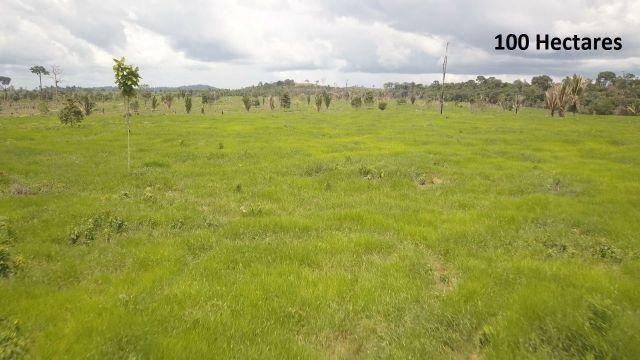Fazenda no município de Machadinho do Oeste-RO com 100 Hectares - FA0064