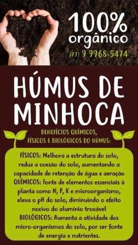 Húmus De Minhoca Kit 10 Pacotes 1,5 Kg, Fertilizante Orgânico - Foto 3