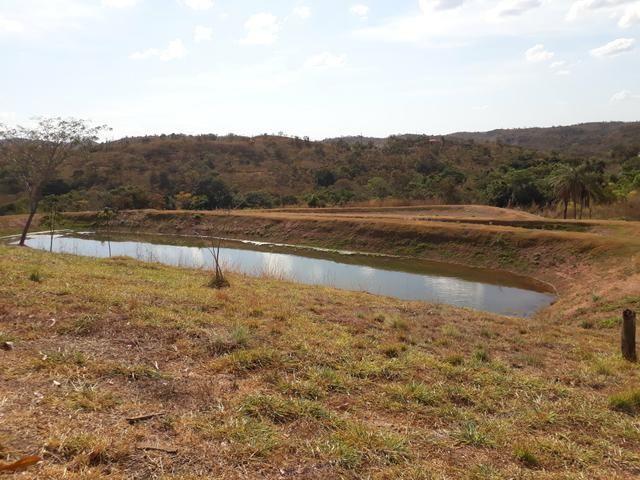 Oportunidade!! Vendo excelente fazenda em Formosa Goiás, com 168 hectares com muita água - Foto 16