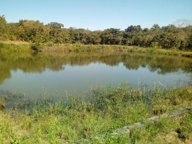 Chácara 2 tanque para peixe e pasto no Rio Cuiabá a 6 km de Acorizal - Foto 3