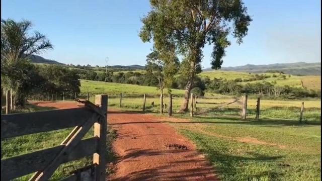 Fazenda a 82 Km de Cuiabá-MT próximo a Acorizal - Foto 12
