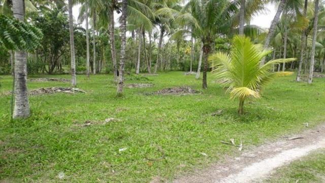 Terreno à venda em Centro, Cairu cod:55951 - Foto 13