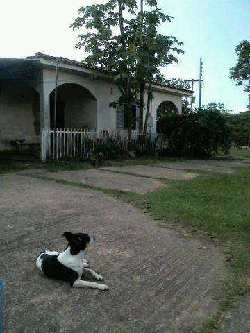 Estancia Casa Rosada 8 hectares - Foto 12