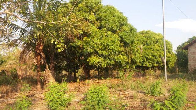 Terreno à venda, 18 alqueires por R$ 540.000,00 - Vila Mandi/PA - Foto 7