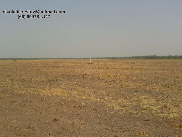 Fazenda porto alegre do norte mt nikolaiimoveis