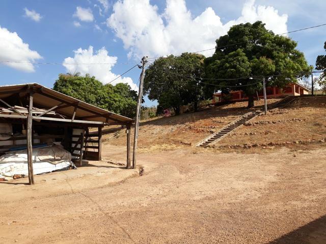 Oportunidade!! Vendo excelente fazenda em Formosa Goiás, com 168 hectares com muita água - Foto 10