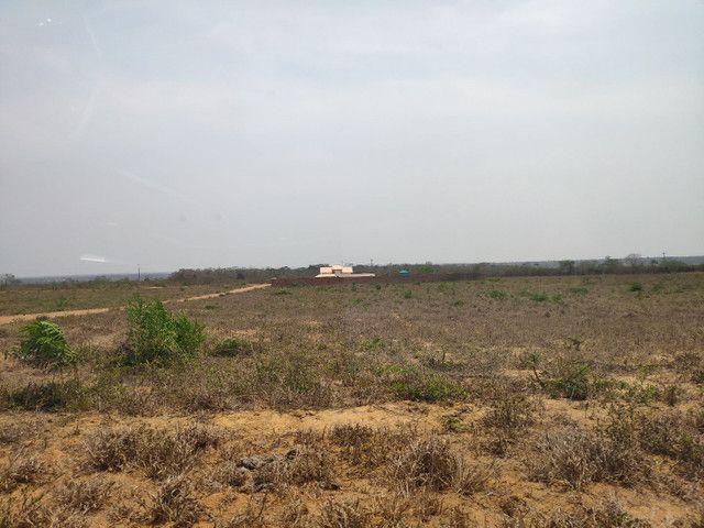 Chácaras Portal dos Ipês - a 100 metros da BR 116 - 96x SEM JUROS  - Foto 8