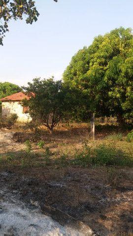 Terreno à venda, 18 alqueires por R$ 540.000,00 - Vila Mandi/PA - Foto 6