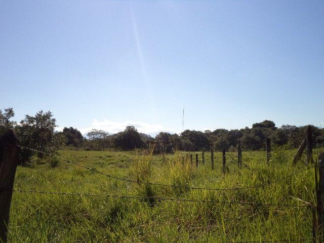 Otimo sítio para criação de gado e moradia - Foto 14