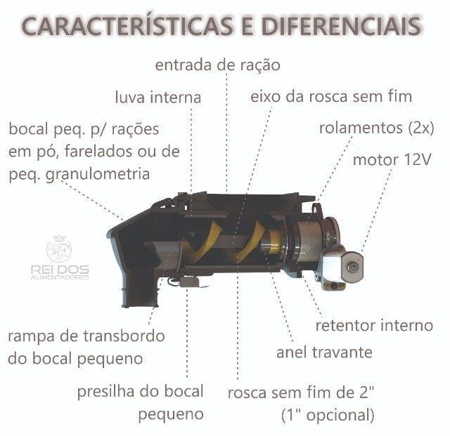 Alimentador Automático para Galinhas - Foto 2