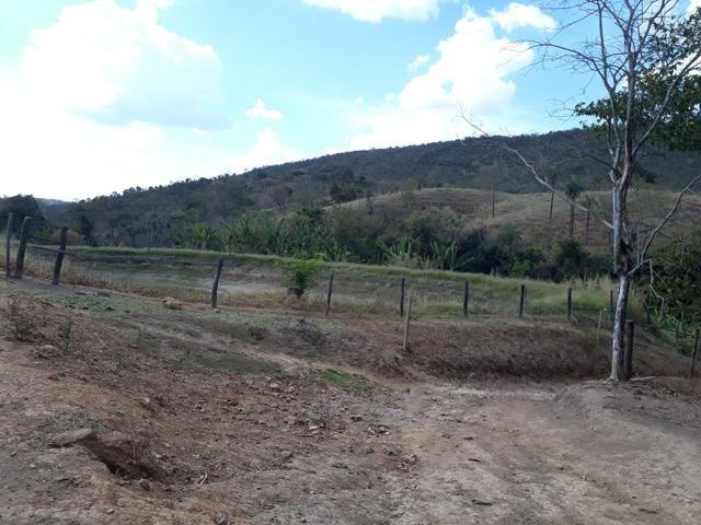Oportunidade!! Vendo excelente fazenda em Formosa Goiás, com 168 hectares com muita água - Foto 12