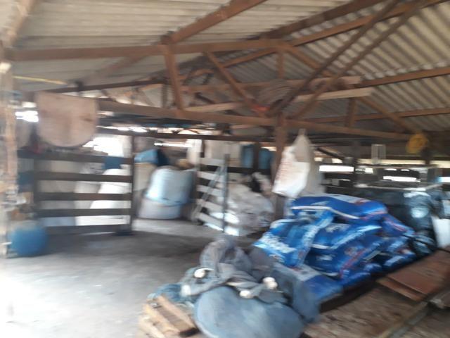 Oportunidade!! Vendo excelente fazenda em Formosa Goiás, com 168 hectares com muita água - Foto 14